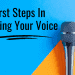 First Steps In Training Your Voice