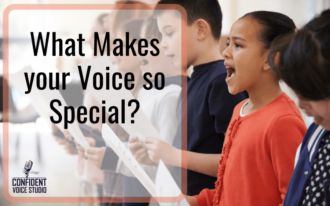 What Makes your Voice Special?